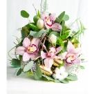 Flori: cymbidium și lalele; Preț: 106 lei.